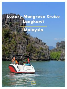 A quick roundup of what it is like to go on a luxury mangrove cruise tour in Langkawi, Malaysia. With tips & plenty of photos.   Read more here http://www.rambleandwander.com/2016/12/malaysia-luxury-mangrove-cruise-langkawi.html