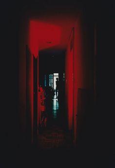 Entre chien et loup, entre rouge et bleu photographies de Yu Hirai #FredericClad #THEFARM