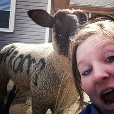 This girl got a freaking promposal SHEEP. That's one way to make the rest of the school jealous. | Did You Know That High Schoolers Are Sharing Absolutely Adorable #Promposals On Instagram?