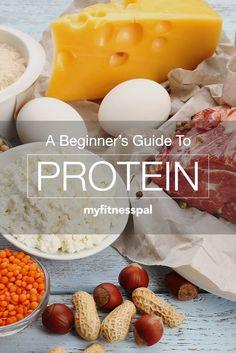 Beginner's Guide to Protein #protein #health #vitaminA #vitamins #L4L