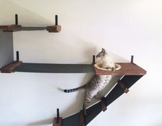 Cat Shelf -- Deluxe Wall-Mounted Fabric Playplace Equipped w/ Ladder