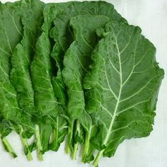 Sobre a Couve. About Collard Greens. Home Remedies, Natural Remedies, Moringa Leaves, Psoriasis Diet, Carbohydrate Diet, Collard Greens, Spirulina, Medicinal Plants, Natural Medicine