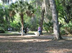 Hiking with dogs at Princess Place. Palm Coast 6-8 miles