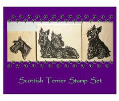 Just purchased! Scottish Terrier Rubber Stamp Set of 3 Scottie Dogs from Highlander Celtic Stamps