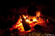 Możliwość zorganizowania ogniska / grilla