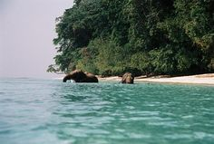 Andaman Island: The Deep Blue Sea Recently opened up for tourism, the pristine islands of Andaman and Nicobar are a veritable oasis for tourists and naturalists alike. If you are looking for honeymoon destinations in India in winter, Andaman and Nicobar group of islands are strong contenders in the race. The islands of Andaman and Nicobar are hilly in places fringed with coconut palm, covered with tropical jungle and interspersed with flat stretches of crescent shaped beaches offering a…