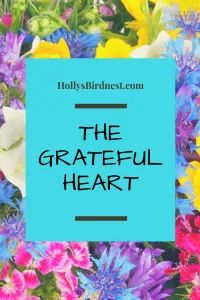 Holly Bird, author, and life coach shares her story about finding gratitude at a time of fear and loss Happy Mom, Happy Life, I Am Blessed, Grateful Heart, If I Stay, Get To Know Me, Migraine, Health And Nutrition, Nest