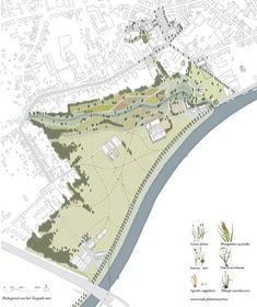 Vlaspark-Kuurne-Delva-landscape-Architects-Plus-Office-Zuiverend-park-fytoremediatie-stadspark-landschapspark-leie-vallei-heulebeek-Leidedal-amsterdam-antwerpen-steven-delva-2.jpg (565×672)