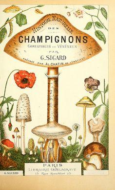 Histoire naturelle des champignons comestibles et vénéneux