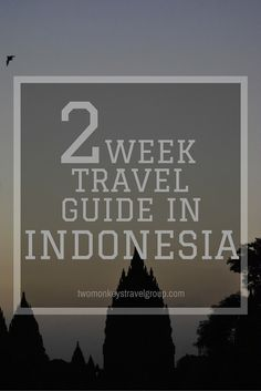 2 Week Travel Guide to Indonesia Island of a Thousand Temples, home of the largest living lizard, vast scenery of green plantations, Batik, active volcanoes and the up-close encounter of crater activities. We are taking you to an ultimate journey towards