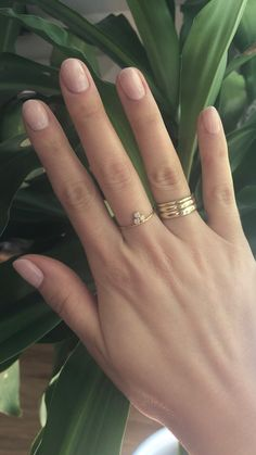 Create an envy-inducing stack or find one simple minimalist ring. Our eco-friendly minimalist rings are handmade and available in solid gold and sterling silver. Short Rounded Acrylic Nails, Short Round Nails, Handmade Rings, Stacking Rings, Jewelry Rings, Fashion Accessories, Silver Rings, Minimalist, Wedding Rings
