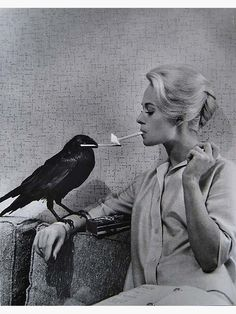 """summers-in-hollywood: """"Tippi Hedren in a promotional image for Alfred Hitchcock's The Birds, Photo by Philippe Halsman """" Tippi Hedren, Retro Horror, Vintage Horror, Creepy Vintage, Funny Vintage, Vintage Movies, Alfred Hitchcock The Birds, Philippe Halsman, Bird Canvas"""