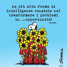 Cute Sweet Corner, Italian Quotes, Charlie Brown And Snoopy, Life Philosophy, My Dear Friend, Funny Quotes, Humor, Words, Peanuts