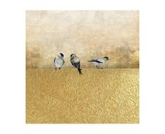 Chelsea Art Studio 'Gold Birds I' Graphic Art Print Size: H x W, Format: Glass Coat (Giclee Canvas with Glass Finish) Buy Pictures, Bug Art, Bird Wall Art, Printable Pictures, Painting Prints, Art Print, Beautiful Birds, Graphic Art, Art Pieces