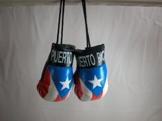 Buy Puerto Rico Bandera Color Mini boxing Gloves Car Hanging Ornament or gifts at Discounted Prices ✓ FREE DELIVERY possible on eligible purchases. Tesla Electric Car, Electric Car Charger, Car Cake Tutorial, Boxing Fight, Lightning Mcqueen, Boxing Gloves, Hanging Ornaments, Social Platform, Kids Playing