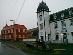 Trinity Newfoundland Canada, Newfoundland And Labrador, Historical Society, Places To Visit, Tours, Landscape, City, Recipes, Beautiful