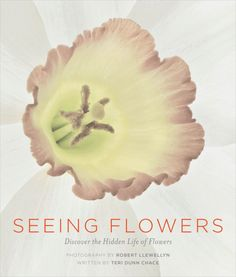 Seeing Flowers: Discover the Hidden Life of Flowers. Available everywhere books are sold.