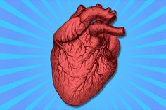 27 Weird Facts You Never Knew About Your Heart Beer Health Benefits, Heart Facts, Wine And Beer, Best Beer, Healthier You, Heart Health, Home Brewing, Natural Healing, Healthy Drinks