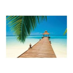 Brewster DM284 Paradise Beach Wall Mural Paradise Beach Home Decor (37.360 HUF) ❤ liked on Polyvore featuring home, home decor, wall art, murals, paradise beach, wallpaper, beach scene murals, wall murals, beach scene wall art and sea wall art