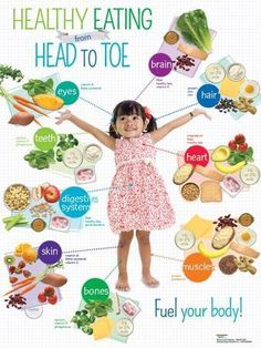 nutrition - Preschool Healthy Eating Head to Toe Poster Photo at AllPosters com Healthy Foods To Eat, Healthy Kids, Healthy Living, Healthy Recipes, Eating Healthy, Clean Eating, Healthy Schools, Healthy Bodies, Stay Healthy