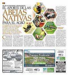 El Mercurio - Revista CAMPO
