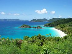 Virgin Islands National Park is more than just beautiful beaches—the area is steeped in rich history and replete with creatures living within the endangered coral reef.