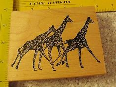 Giraffe MW Rubber Stamp Arizona Stamps   eBay
