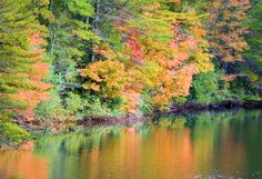 Fall color reflection in Cascade Lake in the North Carolina mountains near Asheville