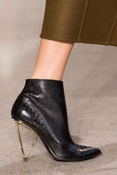 Jason Wu, Fall 2015