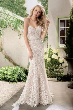 Jasmine Bridal - Collection Style F191006 in Ivory/Nude
