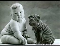 Two little cuties, baby and sharpei / photo: Anne Geddes on Photobucket Anne Geddes, So Cute Baby, Cute Kids, Funny Kids, Adorable Babies, Pretty Baby, Chubby Babies, Fur Babies, Babies Pics
