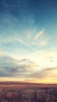 Nature-Wild-Grassland-Skyline-iPhone-6-wallpaper.