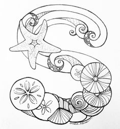 S is for sand dollars, sea urchins, and shells! ✏️#arhsketches Copyright Amalia Hillmann
