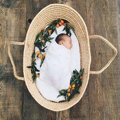 Spring newborn photos by Elate Photo 100 Layer Cakelet Spring Newborn Photos, Newborn Pictures, Baby Pictures, Summer Baby Photos, Sweet Baby Photos, Bebe Love, My Bebe, Foto Newborn, Newborn Shoot