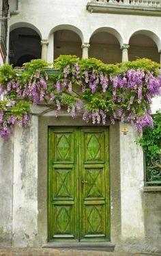 Wisteria and a green door. Love, love, LOVE the wisteria over the green doors! Cool Doors, The Doors, Unique Doors, Windows And Doors, Front Doors, Arched Windows, Garage Doors, Purple Wisteria, Purple Flowers