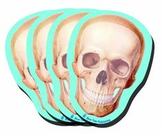 Halloween Skull Stick Notes, 4 Pack-100 Sheets Per Pack B... https://www.amazon.com/dp/B00IICTW0G/ref=cm_sw_r_pi_dp_x_UOlUybJB0XJ92