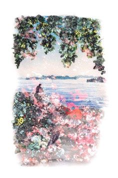 #finland #helsinki #islands #sea #nature #watercolor #photography #forest #landscape Portraits, Forest Landscape, Illustrations, Helsinki, Finland, Watercolor, Sea, Nature, Photography