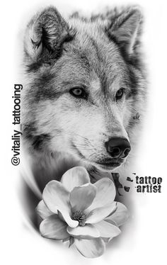 Wolf tattoo - Wolf tattoo The Effective Pictures We Offer You About cat tattoo A quality picture can tell you ma - Wolf Tattoos, Celtic Tattoos, Animal Tattoos, Tattoo Symbols, Wolf Tattoo Sleeve, Cat Tattoo, Sleeve Tattoos, Tattoo Sketches, Tattoo Drawings
