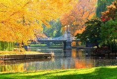 Autumn Splendor in the Boston Common, Boston, Massachusetts