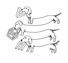 Dachshund, Animal Drawings, Art Drawings, Forced Perspective, Reverse Image Search, A Cartoon, Optical Illusions, Best Funny Pictures, Funny Memes