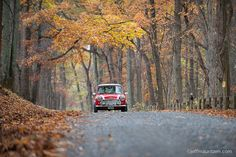 Photo by @jeffmauritzen. A couple take their #minicooper out for a scenic drive in the Piedmont region of Northern #Virginia. While many trees are past their peak there's still lots of color to be seen. Get out and enjoy! by natgeotravel