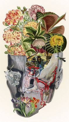 """bedelgeuse: """"mindfulness"""" anatomical collage art by bedelgeuse"""