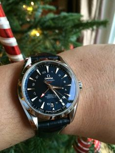 Brilliant OMEGA Seamaster Aqua Terra GMT Chronometer