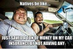 Native probs
