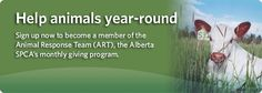 The Alberta Society for the Prevention of Cruelty to Animals - Fort McMurray Updates May 2016 #ymmfire