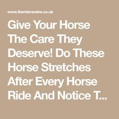 Give Your Horse The Care They Deserve! Do These Horse Stretches After Every Horse Ride And Notice The Difference!