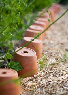 Jos nurkissa pyörii runsaasti ylimääräisiä terracotta-ruukkuja, ne voi asetella reunustamaan istutusalueita. Kuva: Teija Tuisku Terracotta, Terra Cotta