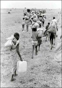 23 best lost boys of sudan images on pinterest lost boys the lost boys of sudan in 2001 before the attacks of 911 publicscrutiny Gallery