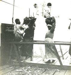 Loading Bananas, Jamaica | Item: 1-543 Title: Loading Banana… | Flickr