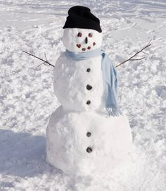 real snowman - Google Search